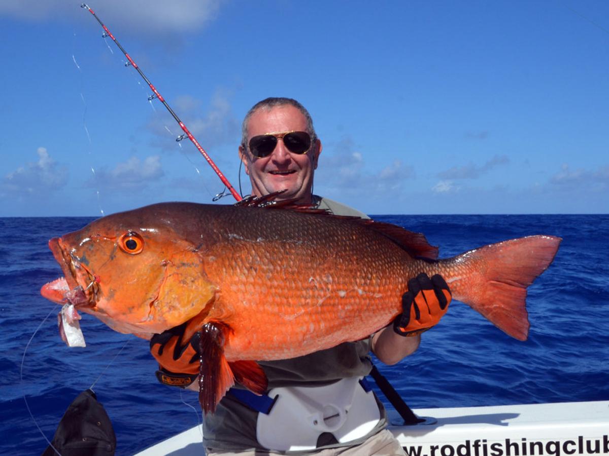 Record du monde potentiel, Carpe Rouge de 15 kg