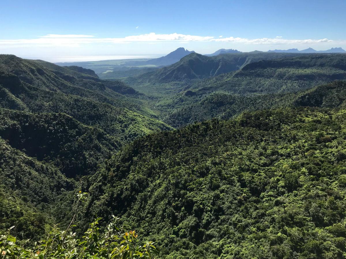 Le parc naturel des gorges de Rivière Noire