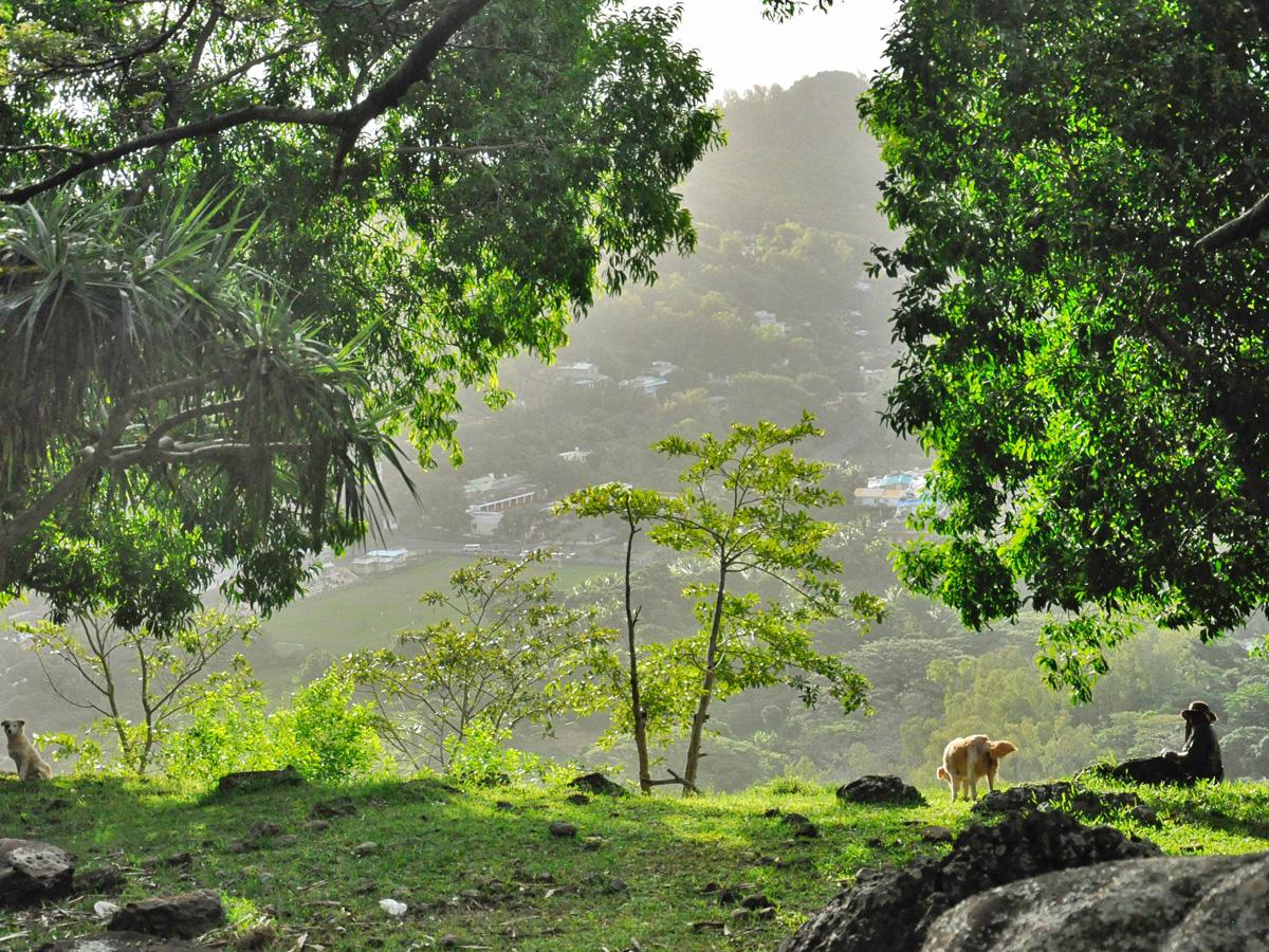 La richesse naturelle de Rodrigues