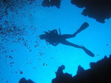 Snorkeling durant votre séjour à La Maison d'Eté