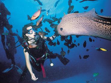 Explorez les fonds marins d'une richesse exceptionnelle de l'île Maurice